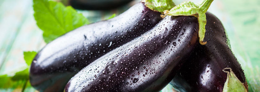 Storing Eggplants