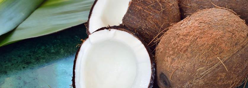 Coconuts Storage