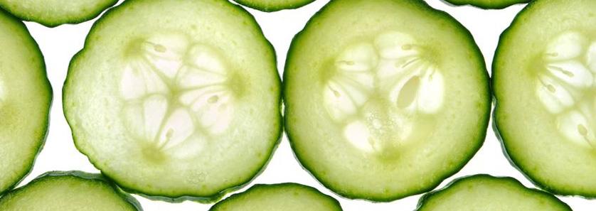 Cucumber Ice Storage