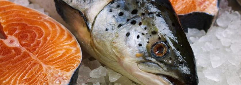 Prevent Fish Spoilage